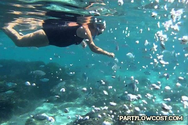 cala mastella snorkel