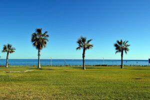playa juana beach club